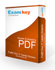 CPA-Auditing PDF